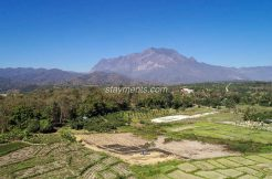 11 Rai for Sale in Chiang Dao