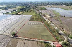 Land for sale in Mae Taeng near the main road and beautiful ricef ields