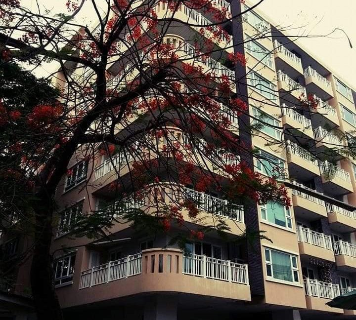 1 bedroom condo for rent punna nimman 10